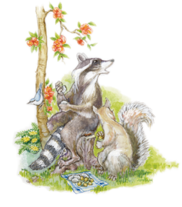 Racoons Beside a Plan