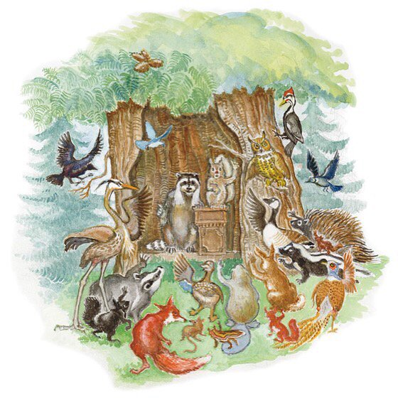 Various Forest Animals Sketch